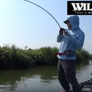 wildside610m