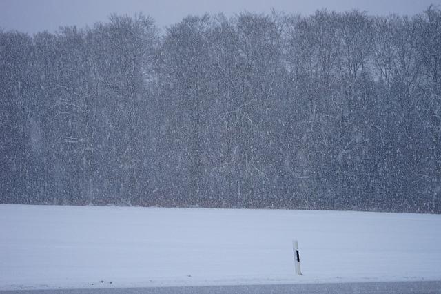blizzard-1025001_640
