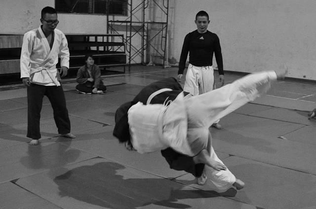 judo-333779_1280