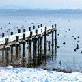 [2016-17最新版①] もはや冬の釣りは寒くない!防寒ウェア選びを間違えないポイント