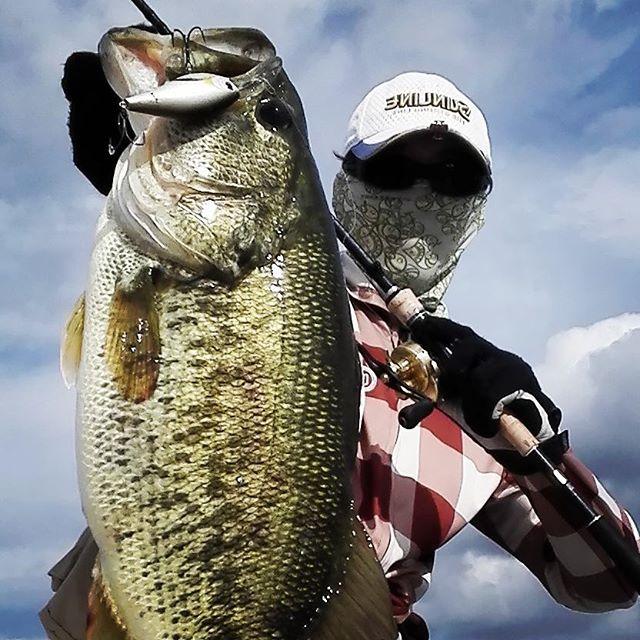 やっぱ琵琶湖、凄過ぎるわ… #biwako #lakebiwa #bassfishing #rokumaru  #ロクマル含む50UP3本 #スピナベとクランクとフリーリグ #何でも釣れるw #一体どうなってるんだ… #まあたまにこんな日があってもいいですよねwww