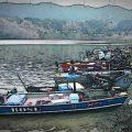 :[D] 結局、釣り場を守るのは釣り人しかいない