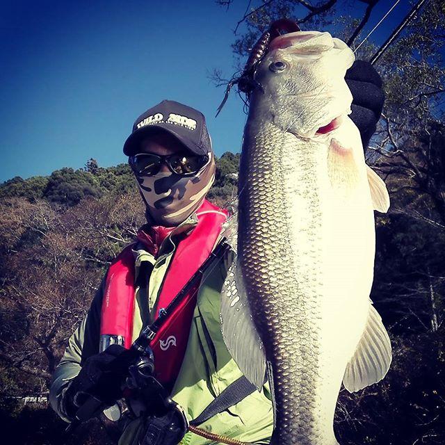 冬の釣りは、1尾がとっても嬉しいですね… #バスフィッシング #winter fishing #フットボールジグ #シューティングボール #デスアダーグラブツインテール #琵琶湖は牽引するのに雪が怖くて行きにくいですが #実は結構冬好きなのです…