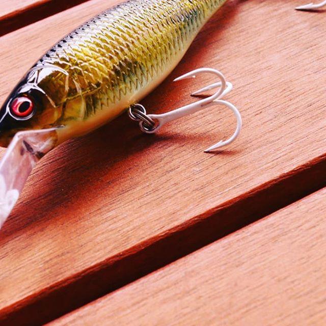 """""""白針""""って、本当に効果あるのでしょうか… #vanfook #刃金トレブル #ステルスホワイト #魚が見上げた時に見えづらいらしい #確かにベイトフィッシュのお腹は白い #つまり保護色って事なのでしょうが… #正直釣果の差は実感出来てません…"""