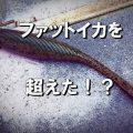 """:[バックスライド系] ドライブスティック""""ファット""""はイカより釣れる!?"""