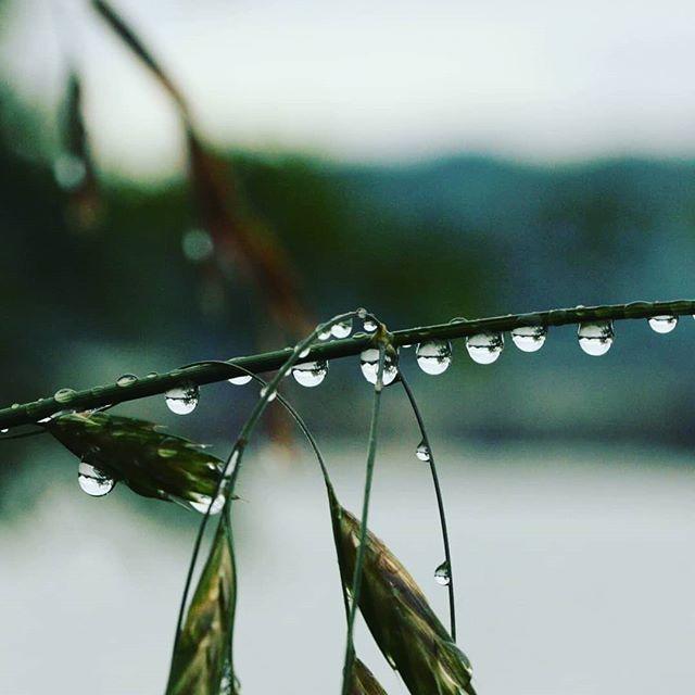春爆を予感させる雨。湖上の皆様の幸運を祈ります…!#春 #暖かい雨 #そして大潮 #いよいよバスも動き出す? #どうか良い釣りを…