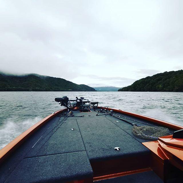 ベクサスAVX1980、乗り心地はなかなかソフトでしたよ…#ベクサスボート #vexusboats #avx1980 #アルミとFRPのハイブリッド#軽量でシャローに入りやすい #船型は平底ですが #浮いている分叩きにくい? #軽いからか燃費も良好 #非常に経済的な一艇かと…