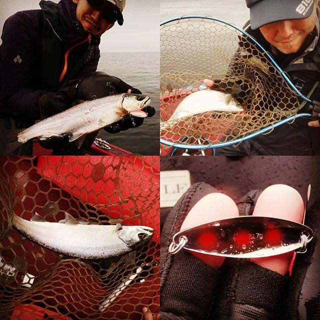 本日は初めてのビワマス釣りへ。幻の魚と思っていたら、たくさん釣れて驚きでした…#琵琶湖の宝石 #琵琶鱒 #スプーン #スミス #ヘヴン #ピュア #7g #でもいない所には全然居ない #しかも結構セレクティブ #船頭さんに感謝です…
