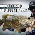 :[野尻湖に学ぶ] スモールマウスバス釣りの一大基本