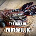":[D] フットボールを理解する – ""立つ""ジグと""這う""ジグの違いとは?"